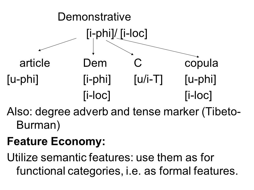 Demonstrative [i-phi]/ [i-loc] article Dem C copula [u-phi] [i-phi] [u/i-T] [u-phi] [i-loc] [i-loc] Also: degree adverb and tense marker (Tibeto-Burman) Feature Economy: Utilize semantic features: use them as for functional categories, i.e.